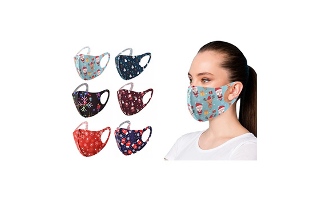 6-Pack : Holiday Themed Reusable Face Masks - $14.99 with FREE Shipping!
